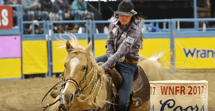 Best Saddle Pad for Barrel Racing
