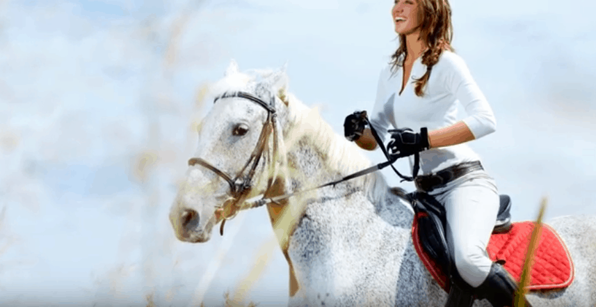 best saddle pad for high withered horse
