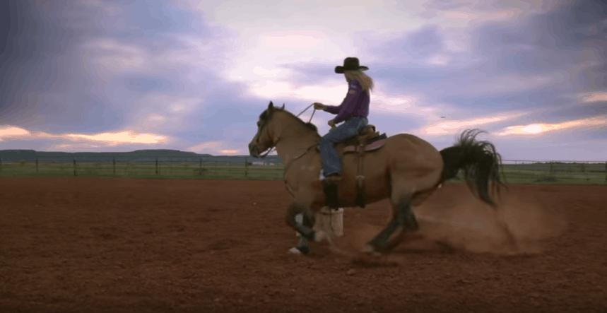 Bareel Racing Saddle Pad