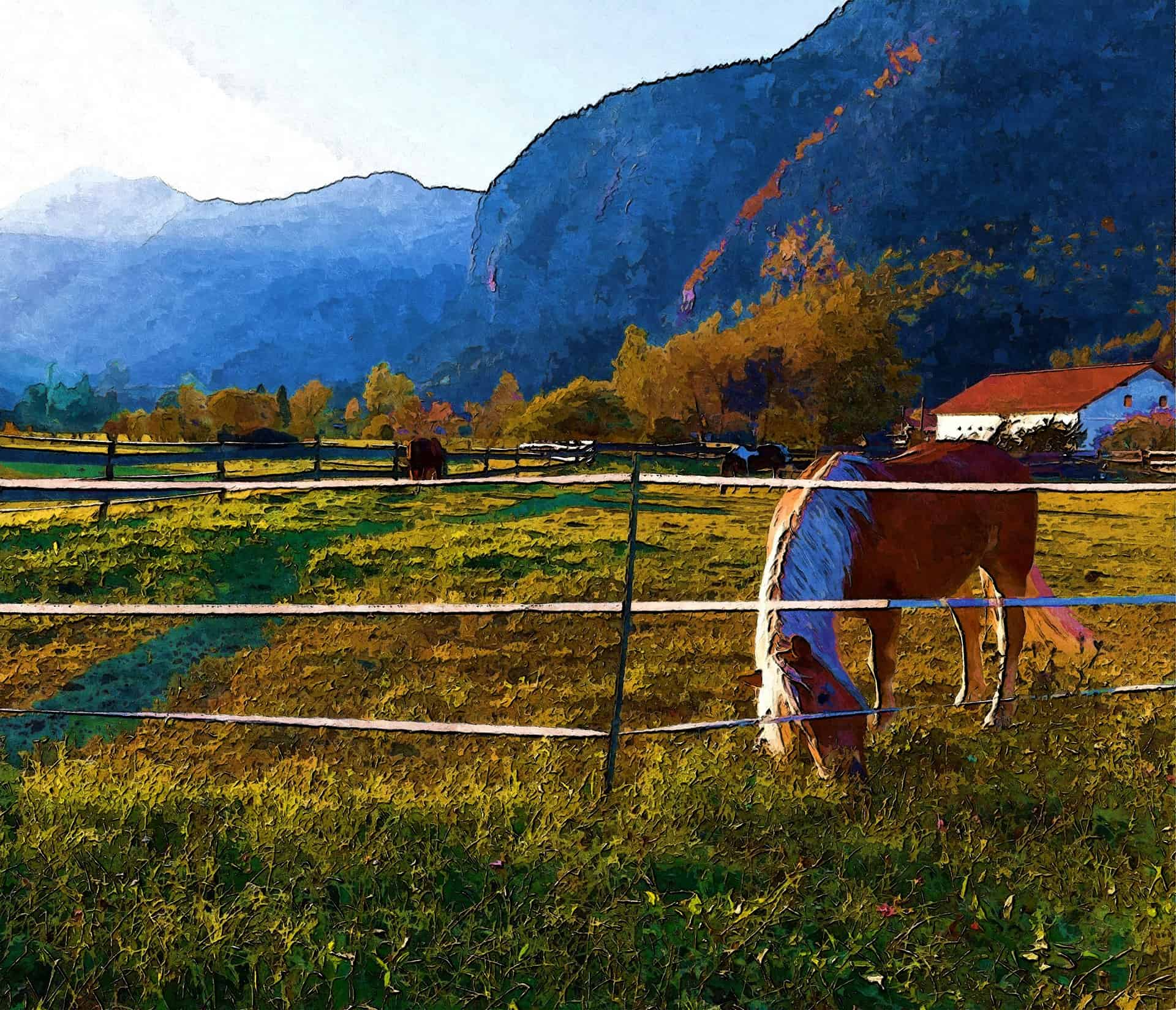 Horse Electric Fence Charger