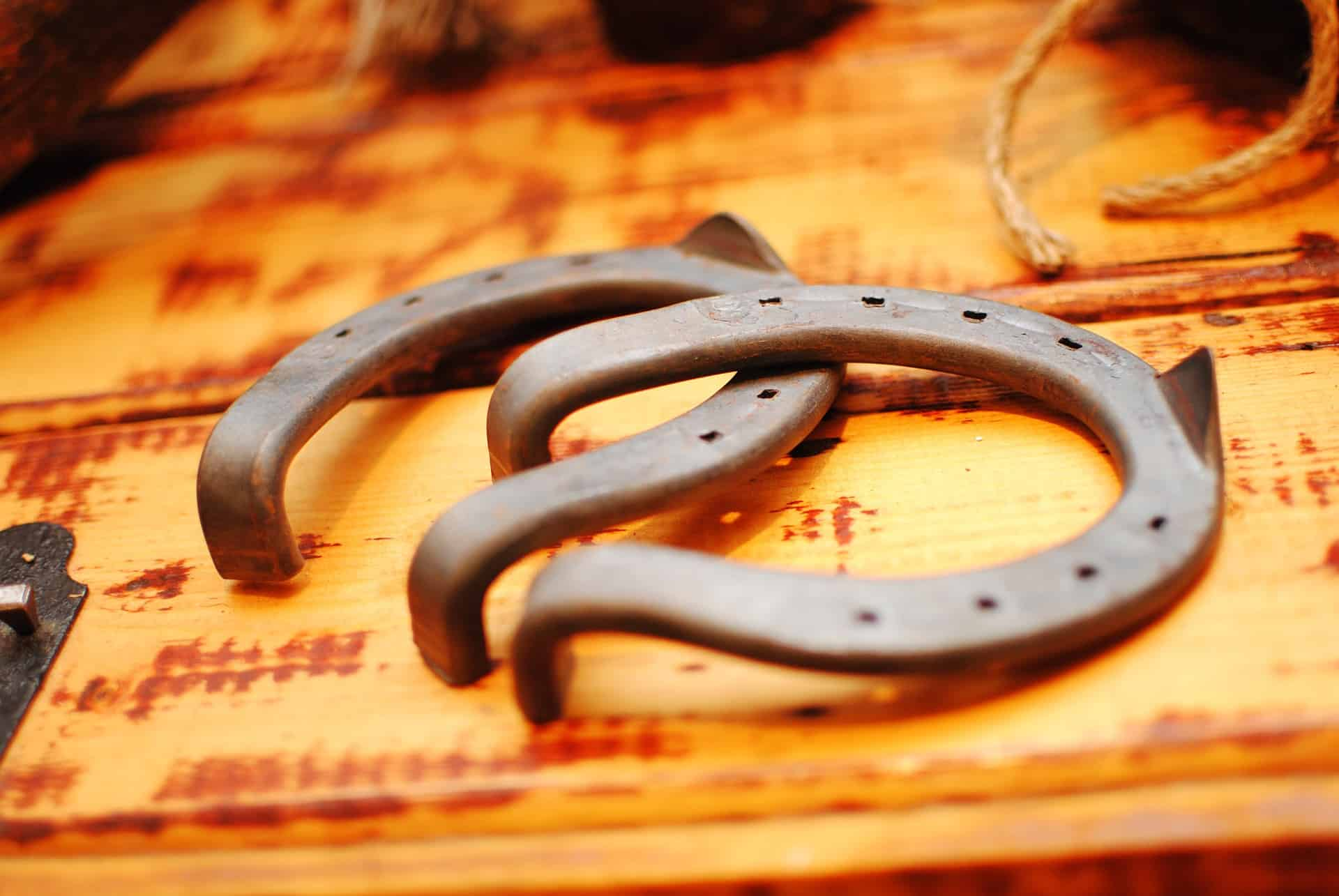 horseshoes for fliping
