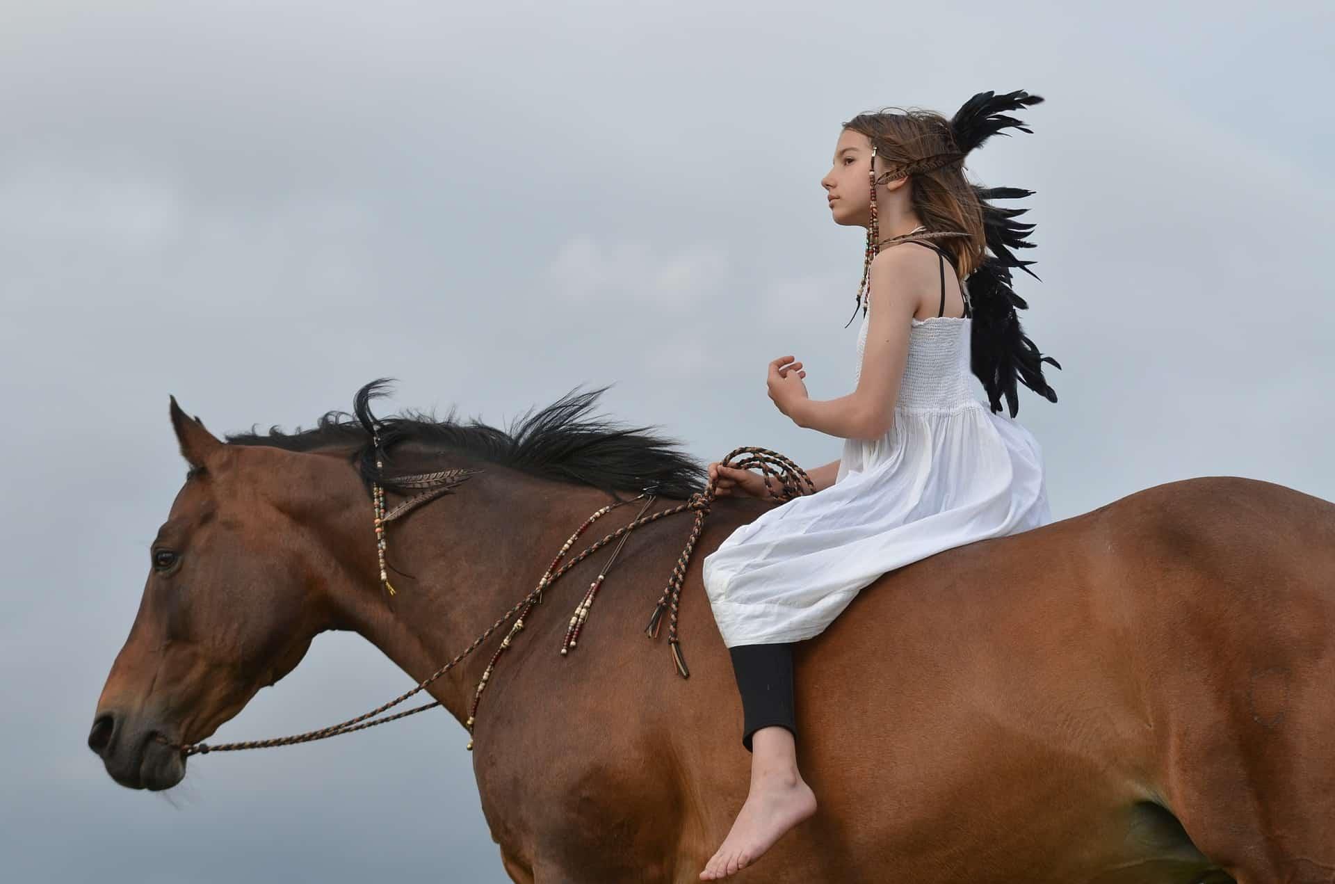 American Quarter Horse Lifespan info