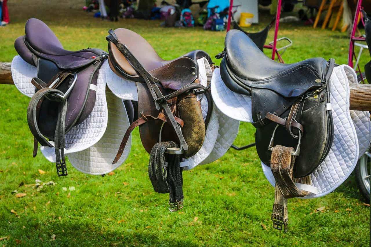 Reviews for Wintec Saddle