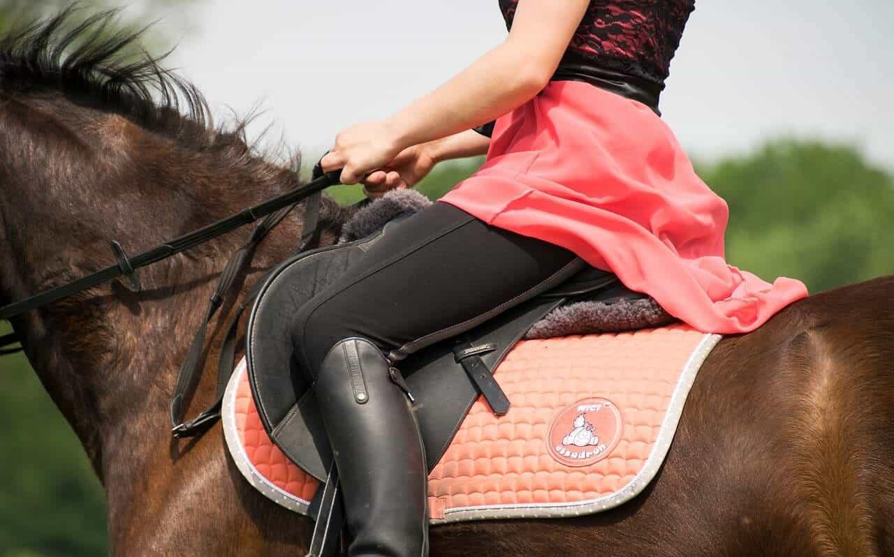 abetta saddle