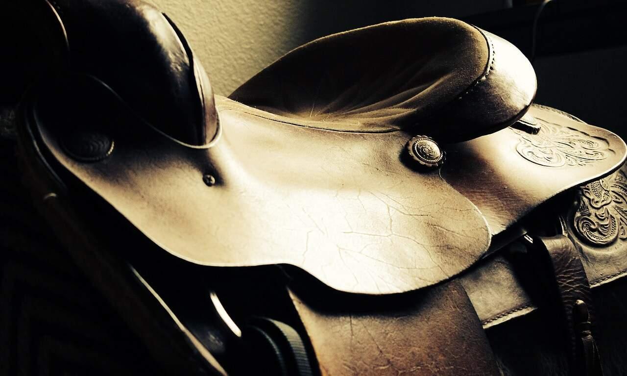 review of abetta saddle