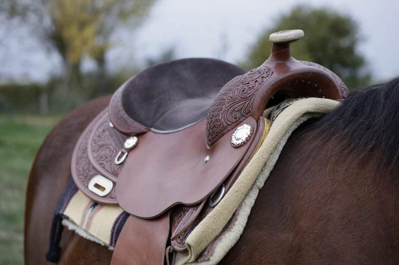 reviews billy cook saddles